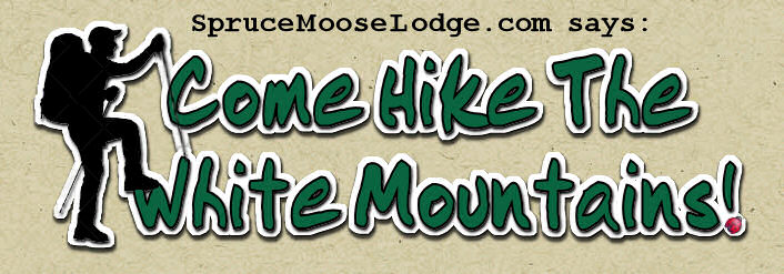 White Mountains in NH - a Great Place to Hike!