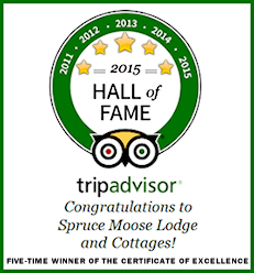 5-Time Excellence Award Winner Hall of Fame Bed and Breakfast in New Hampshire!