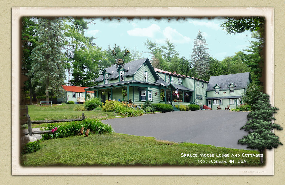 North Conway NH Bed & Breakfast in White Mountains - Spruce Moose Lodge